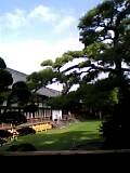 芝生の広場〜