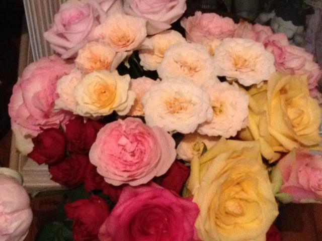 薔薇がいっぱい(^^)