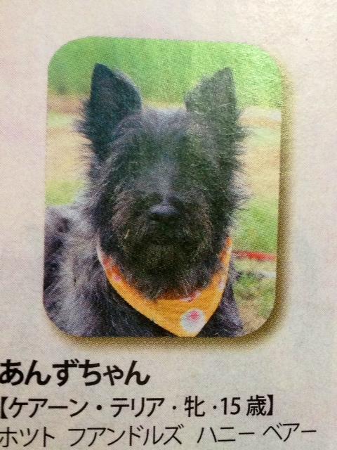 長寿犬表彰*\(^o^)/*