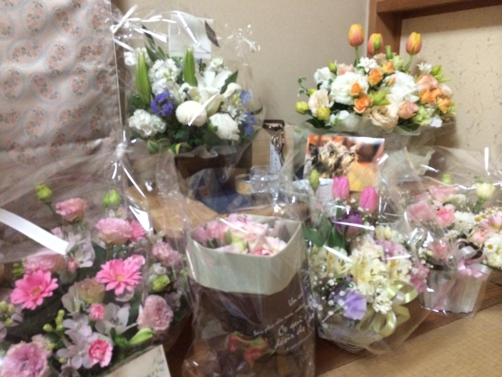 お花に囲まれて~(^^)
